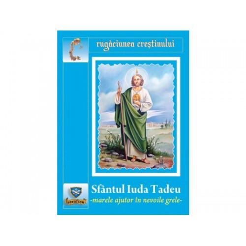 Sfântul Iuda Tadeu-marele ajutor în nevoile grele